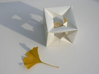 Ginkgo-Blatt mit FS Würfel von Alexander HEINZ